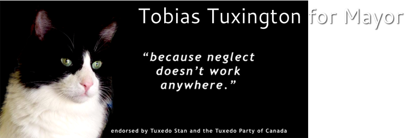 Tobias Tuxington for Mayor